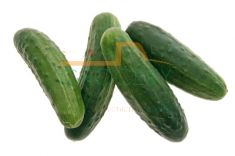 Pickle Cucumber - 3 Pieces (approx 1 lb)