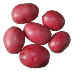 Small Red Potato - 1 LB